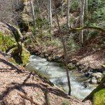 Фотинска река