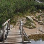Дървен мост по пътя към връх Тодорка