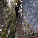 Дървен мост на Дяволска екопътека