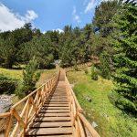 Дървени стълби към Байкушева мура