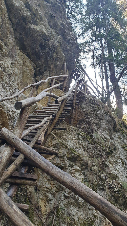 Дяволска екопътека - Дървен мост