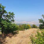 Гледка от връх Голяма Драгойна