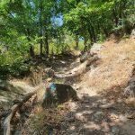 Пътека преди връх Малка Драгойна