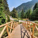 Дървени стълби до Байкушева мура